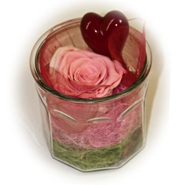 stabilisierte rose im glas rosa kaufen bei. Black Bedroom Furniture Sets. Home Design Ideas